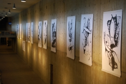 Exhibition of big drawings at the RUN, Nijmegen